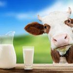 27.05.2019 На вооружение потребителям молока: как выбрать качественный и безопасный для здоровья продукт